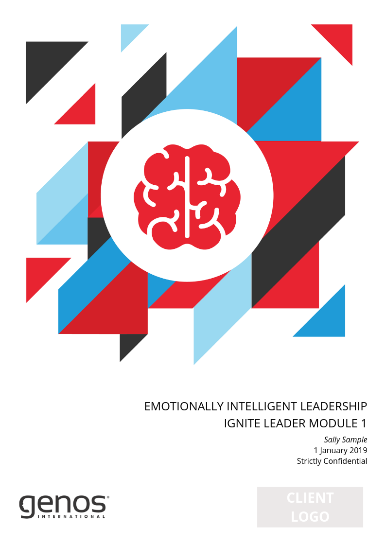 Module 1: The Emotionally Intelligent Leader